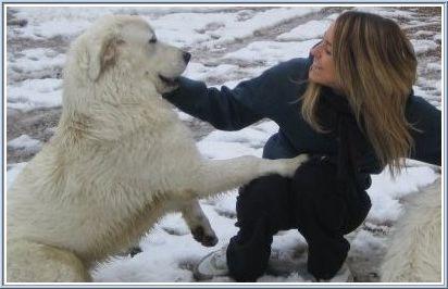 Elena Artioli with her dog