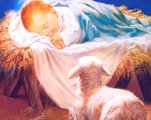 Newborn Jesus and sheep